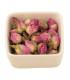 capullitos de rosas enteras