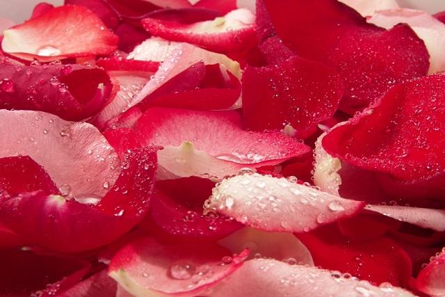Recetas de la aromaterapia para hacer desodorantes naturales