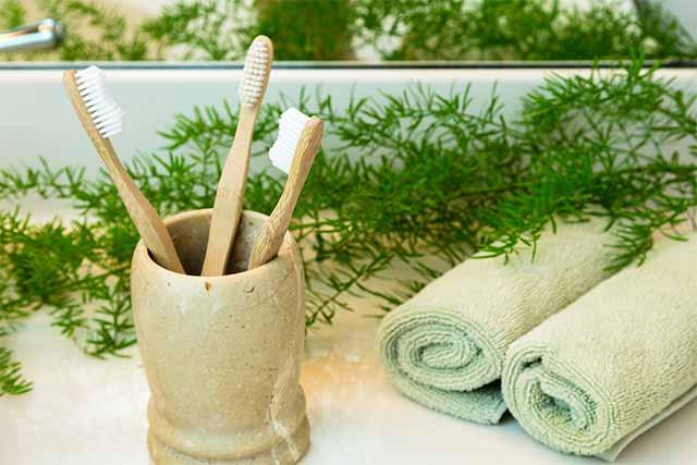 Todo lo que necesitas saber sobre los cepillos biodegradables