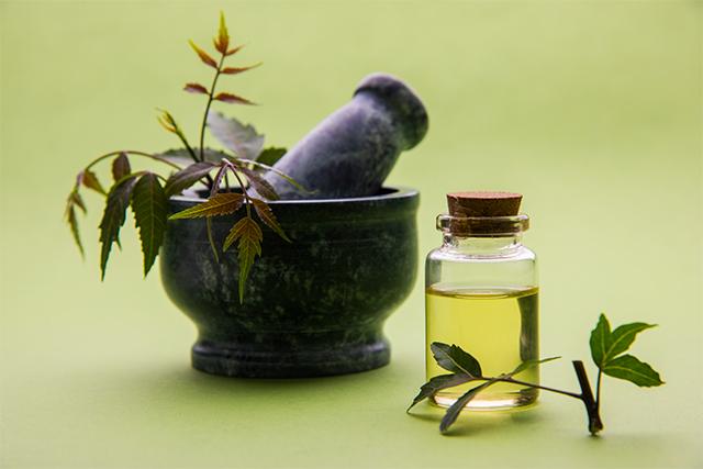 Despídete de los piojos con estos remedios caseros