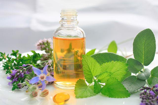 Aceite de borraja virgen BIO, el perfecto agente antienvejecimiento