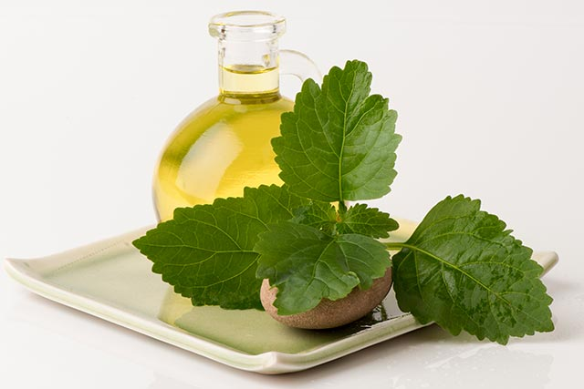 Aceite de pachuli (patchouli oil)