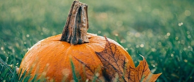 Recetas de cosméetica natural para Halloween