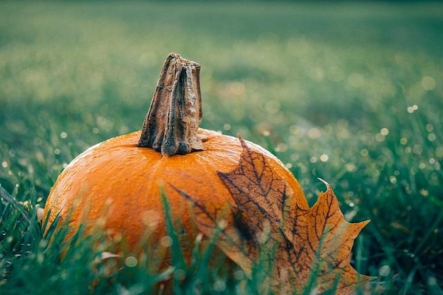 Recetas caseras de cosmética natural para Halloween