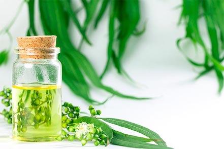 Aceites esenciales para la elaboración de cosmética natural