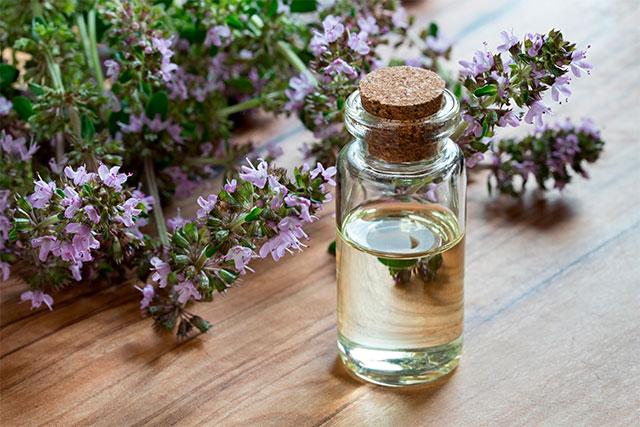 Aceite esencial de tomillo, el ingrediente perfecto contra el resfriado