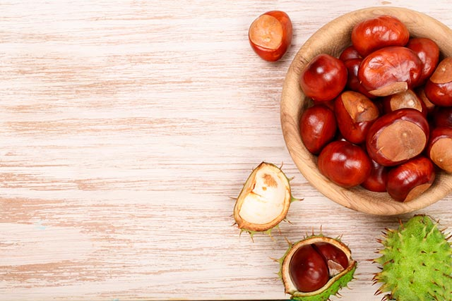 Beneficios del extracto de castaño de Indias