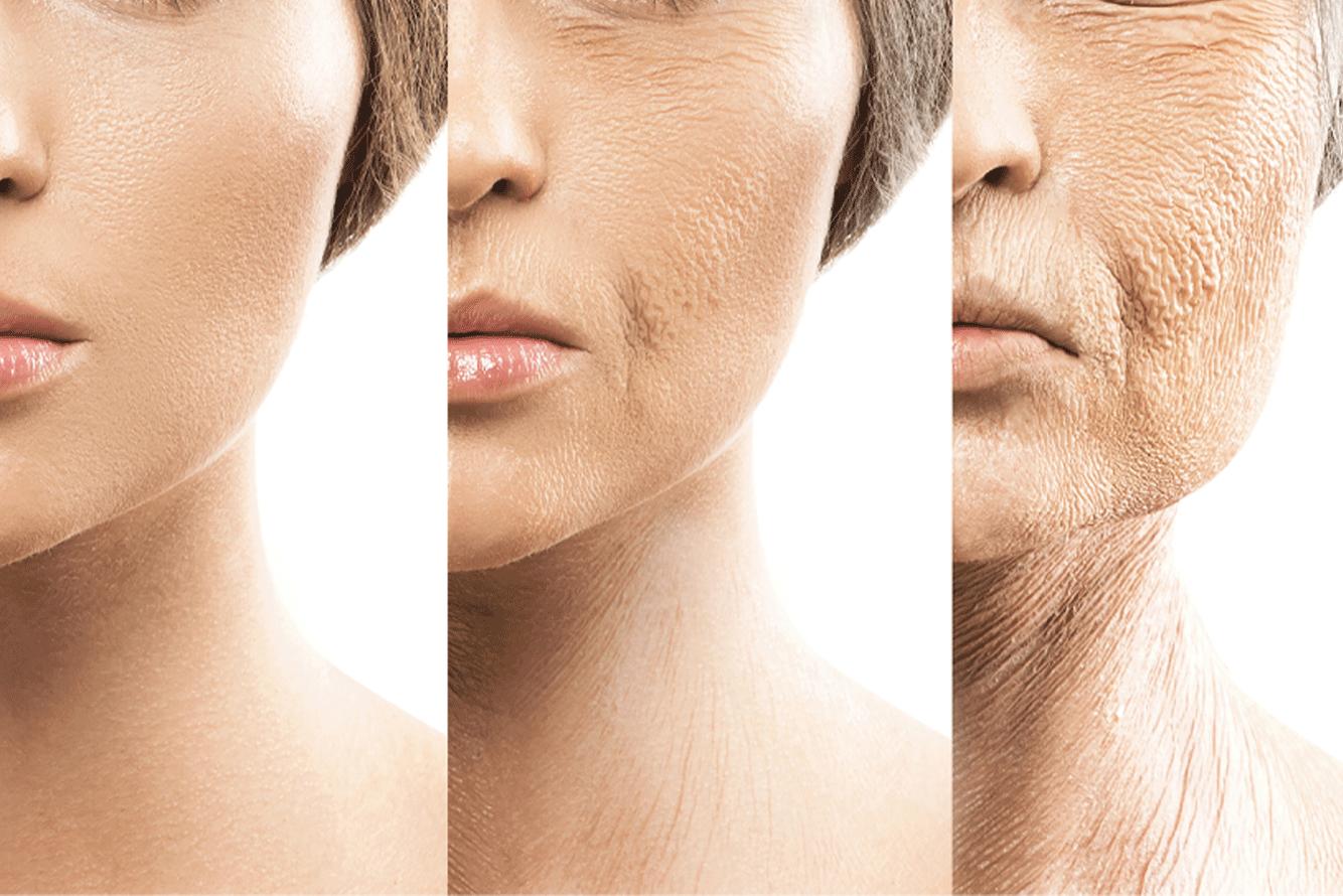 beneficios de los antioxidantes en cosmética natural