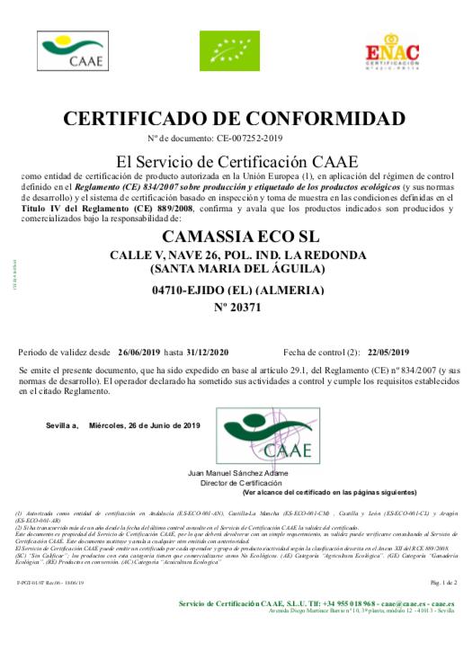 caae2020.png